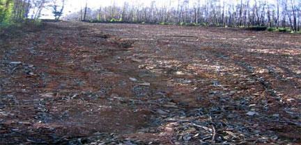 Nuevos materiales para el control de la erosión tras los incendios forestales