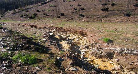 Control de la erosión tras los incendios