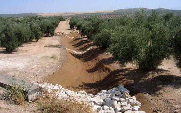 Restauración hidrológica de cárcavas