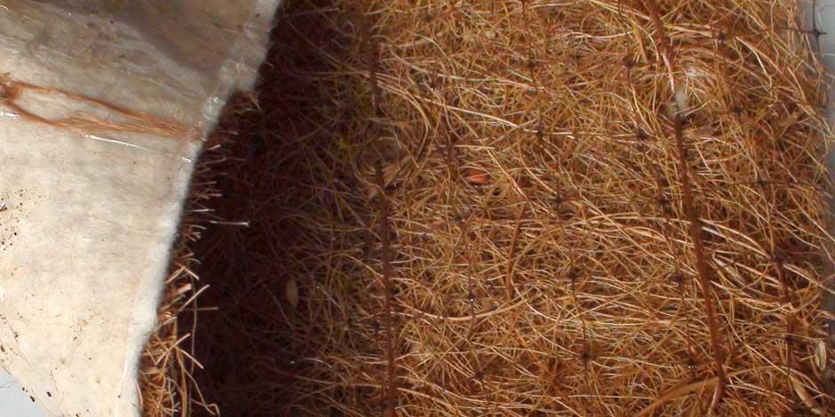 Mantas orgánicas semilladas